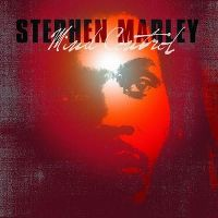 Cover Stephen Marley - Mind Control