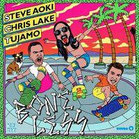 Cover Steve Aoki, Chris Lake & Tujamo - Boneless