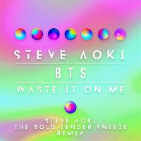 Cover Steve Aoki feat. BTS - Waste It On Me