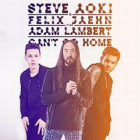 Cover Steve Aoki & Felix Jaehn feat. Adam Lambert - Can't Go Home
