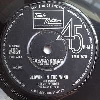 Cover Stevie Wonder - Blowin' In The Wind