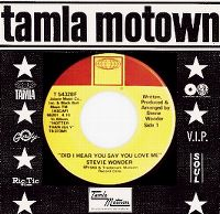 Cover Stevie Wonder - Did I Hear You Say You Love Me