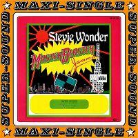 Cover Stevie Wonder - Master Blaster (Jammin')