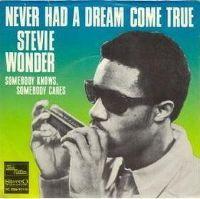 Cover Stevie Wonder - Never Had A Dream Come True