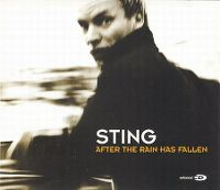 Cover Sting - After The Rain Has Fallen