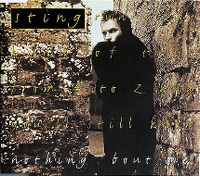 Cover Sting - Nothing 'Bout Me