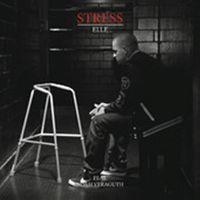 Cover Stress feat. Noah Veraguth - Elle