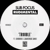 Cover Sub Focus & Rudimental feat. Chronixx & Maverick Sabre - Trouble