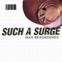 Cover Such A Surge - Was Besonderes