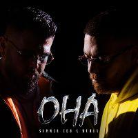 Cover Summer Cem x Murda feat. Luciano - OHA Remix