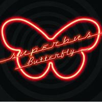 Cover Superbus - Butterfly