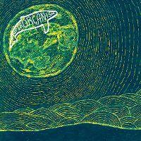 Cover Superorganism - Superorganism