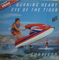 Cover Survivor - Burning Heart