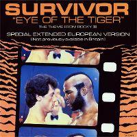 Cover Survivor - Eye Of The Tiger