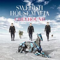 Cover Swedish House Mafia - Greyhound