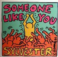 Cover Sylvester - Someone Like You