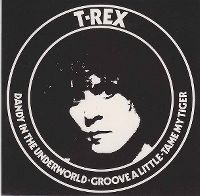 Cover T. Rex - Dandy In The Underworld