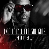 Cover Taio Cruz feat. Pitbull - There She Goes