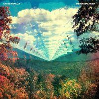 Cover Tame Impala - Innerspeaker