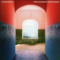 Cover Tame Impala - Posthumous Forgiveness