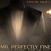 Cover Taylor Swift - Mr. Perfectly Fine