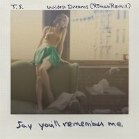 Cover Taylor Swift - Wildest Dreams