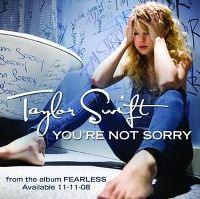 Cover Taylor Swift - You're Not Sorry
