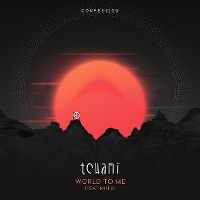 Cover Tchami feat. MNEK - World To Me