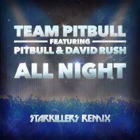 Cover Team Pitbull feat. Pitbull & David Rush - All Night