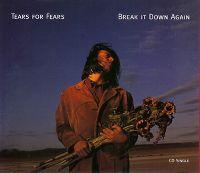 Cover Tears For Fears - Break It Down Again