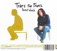 Cover Tears For Fears - Secret World
