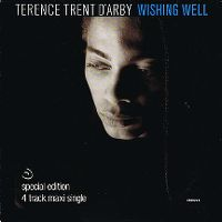 Cover Terence Trent D'Arby - Wishing Well