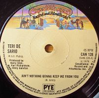 Cover Teri DeSario - Ain't Nothing Gonna Keep Me From You