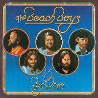 Cover The Beach Boys - 15 Big Ones