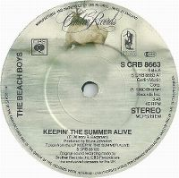 Cover The Beach Boys - Keepin' The Summer Alive