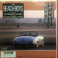Cover The Beach Boys - She Believes In Love Again