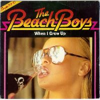 Cover The Beach Boys - When I Grow Up (To Be A Man)