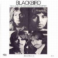 Cover The Beatles - Blackbird