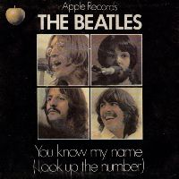 Cover The Beatles - You Know My Name (Look Up The Number)