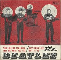 Cover The Beatles - You Like Me Too Much
