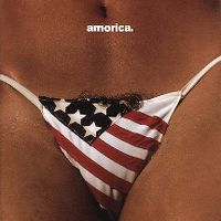 Cover The Black Crowes - Amorica.