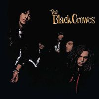 Cover The Black Crowes - Shake Your Money Maker