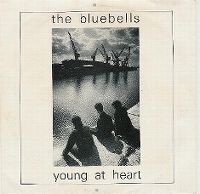 Cover The Bluebells - Young At Heart