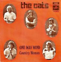 Cover The Cats - One Way Wind