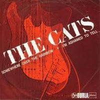 Cover The Cats - Somewhere Over The Rainbow