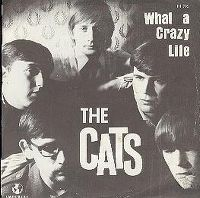 Cover The Cats - What A Crazy Life