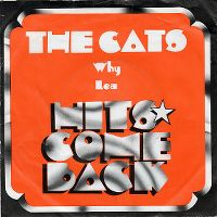 Cover The Cats - Why