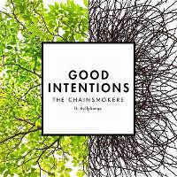 Cover The Chainsmokers feat. BullySongs - Good Intentions