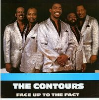 Cover The Contours - Face Up To The Fact