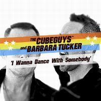 Cover The Cube Guys & Barbara Tucker - I Wanna Dance With Somebody